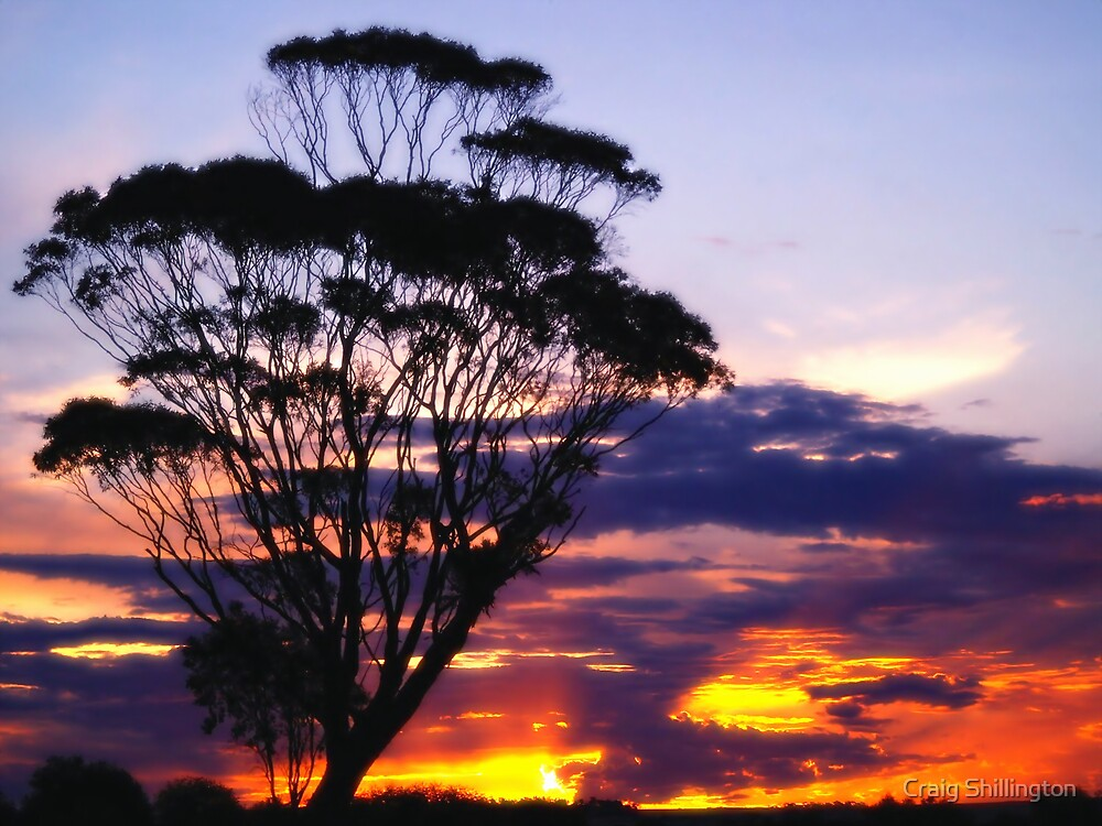 Saltlake Sunset by Craig Shillington