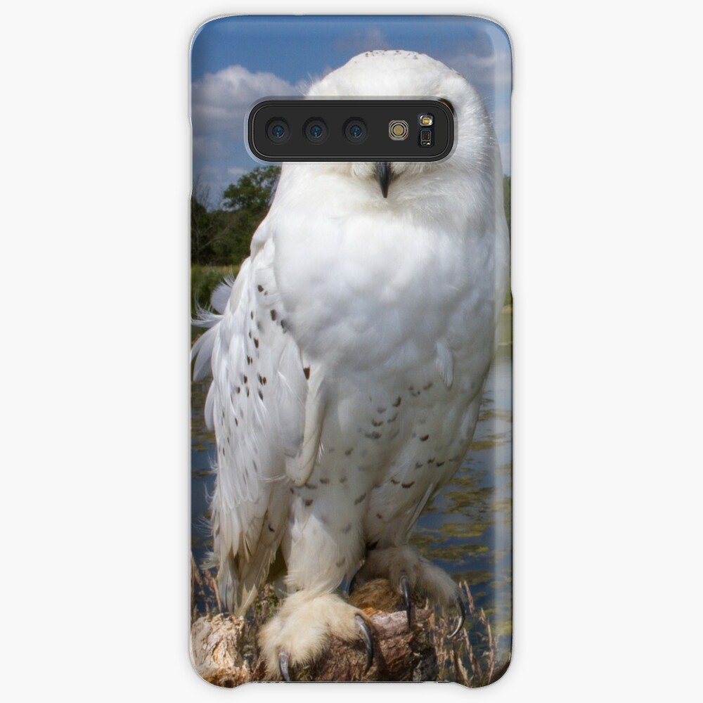 Owl with a view Case & Skin for Samsung Galaxy