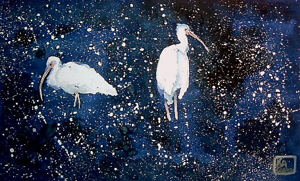 Water Birds by K. A.  Cooper