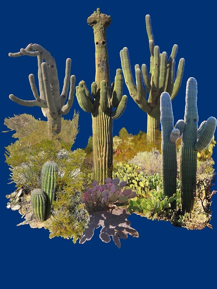 Saguaros of ARIZONA by DAdeSimone