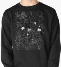 Process of Decay Pullover