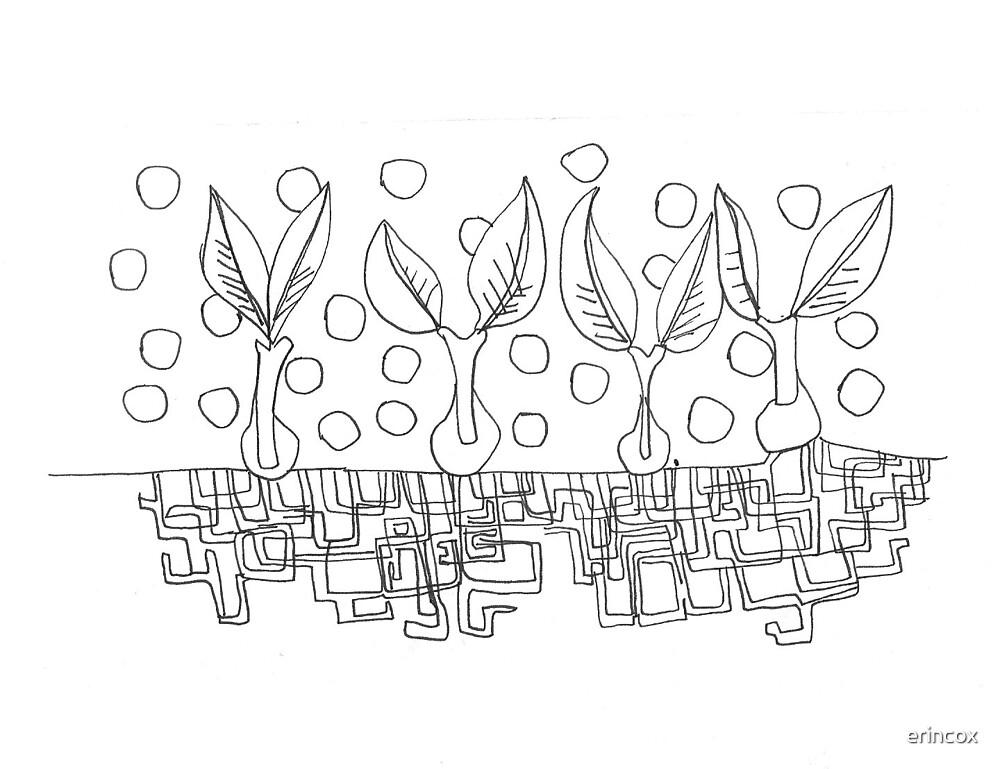 seedlings by erincox