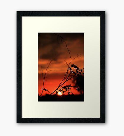 Templestowe sunsets Framed Print