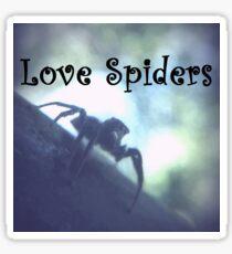 Love Spiders Sticker