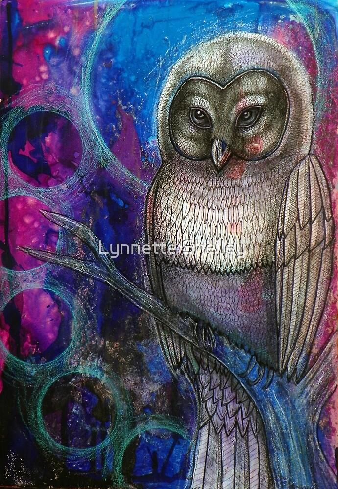 Illumination by Lynnette Shelley