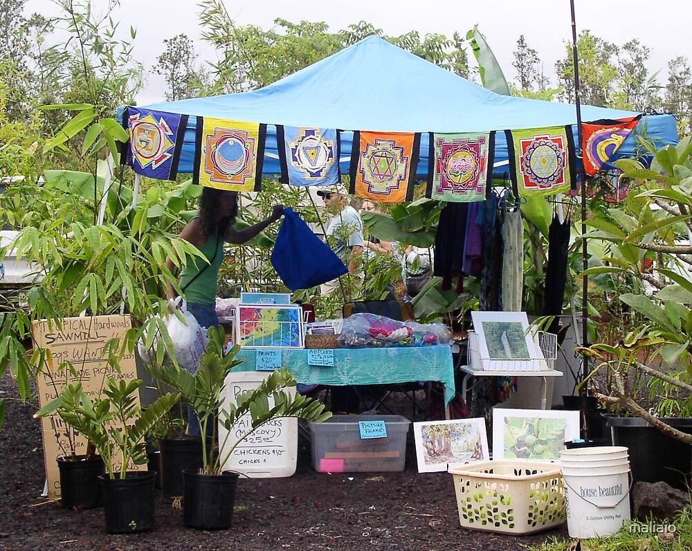 Booth at Maku'u Farmer's Market by maliaio