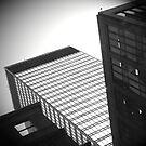 NYC series - #11 by jaeepathak