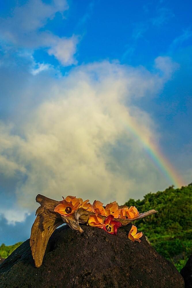 Rainbow Flowers by redmahan