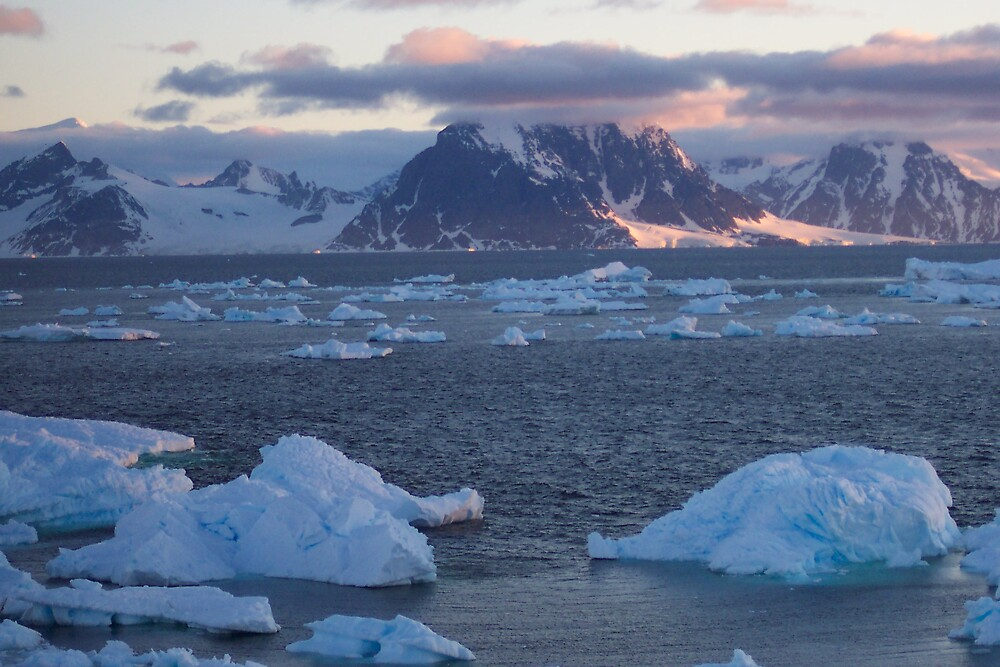 MIDNIGHT IN ANTARCTICA by arnolp04