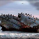 Meisho Maru 38 by Chris Coetzee