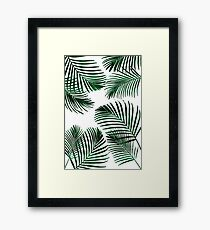 Tropical Palm Leaf Framed Print