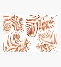 Rose Gold Palm Leaves Photographic Print