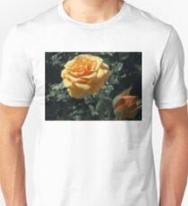 orange rose with bud 05/04/17 T-Shirt
