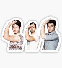Jonas Brothers Throwing Gamma Sticker