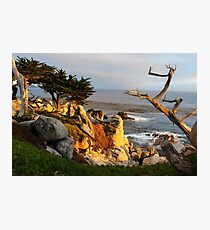 Carmel California coastal view Photographic Print