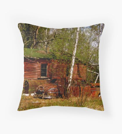 Where Did Everyone Go? Throw Pillow