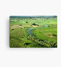 Okavango Delta Aerial Canvas Print