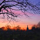 Evening Sky by Andy Harris