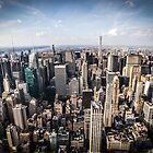 New York Skyview by infinitephotos