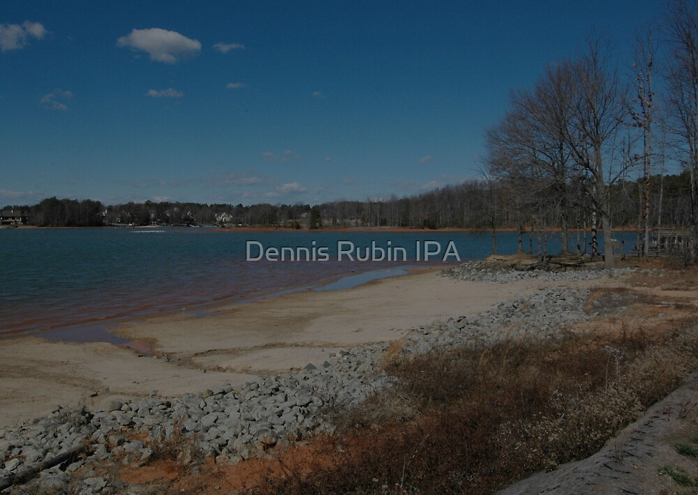 Striations on the Shore Line by Dennis Rubin IPA