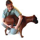 VET DOG FOOT BOXER  by SofiaYoushi