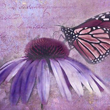 Forgotten Love Letters by JohnDSmith