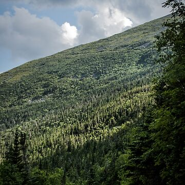 Mt. Washington Auto Road by infinitephotos