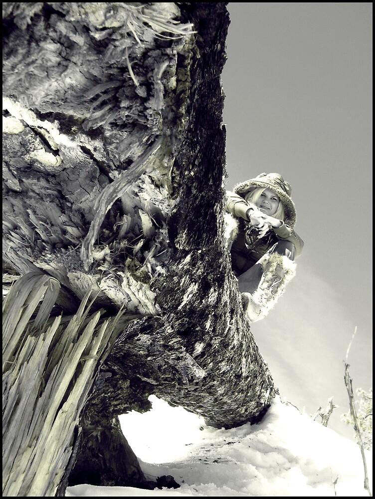 Fallen Tree by Melissa  Carroll