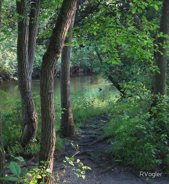 Trail Bend by RVogler
