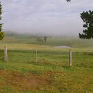 Another misty Morning by Allenjohn