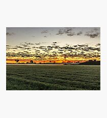 Sunrise over windmill in paddock Photographic Print