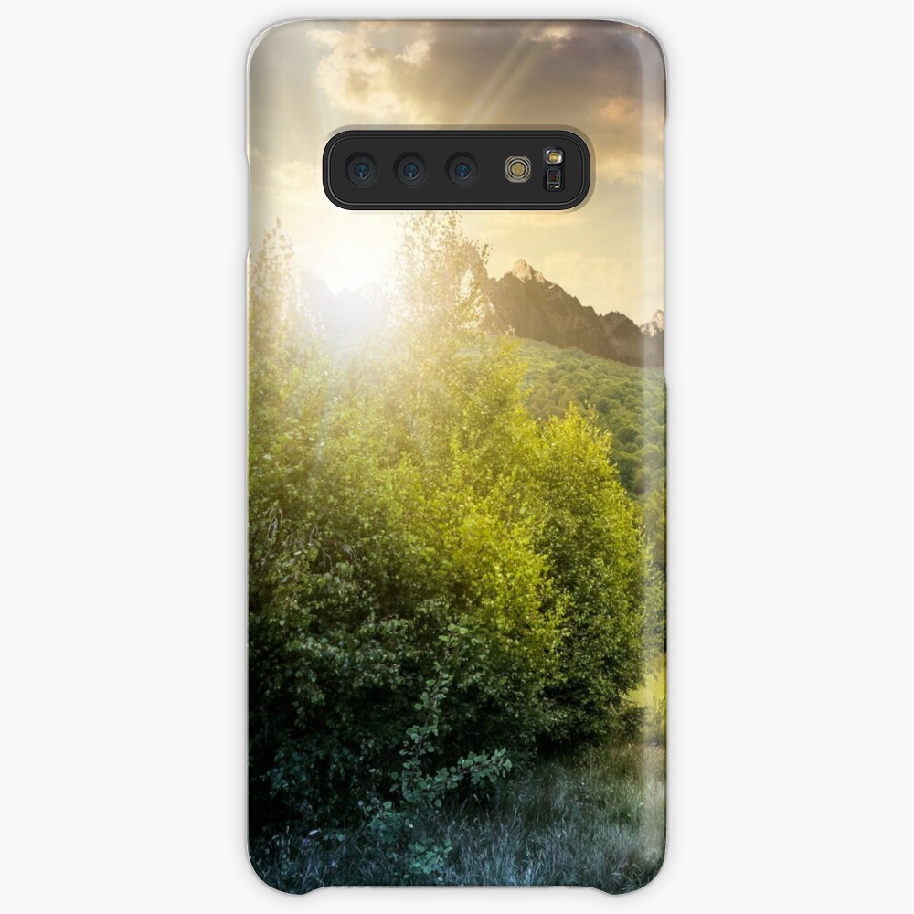 Spruce forest on a meadow in Tatras Samsung Galaxy Snap Case