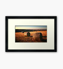 1473 Golden Plain - Barrabool Hills Framed Print