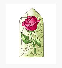 Enchanted Rose Photographic Print