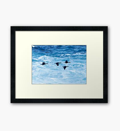 Cormorants  Skimming the Waves off Inishmore Framed Print