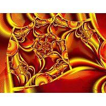 ORANGE BLOSSOM by DREAMS818