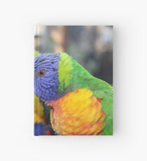 Australian Rainbow Lorikeets Hardcover Journal