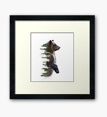 bear 1 Framed Print