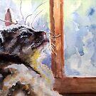 Watching The Rain by Jim Phillips