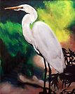 Great White Egret by Jim Phillips