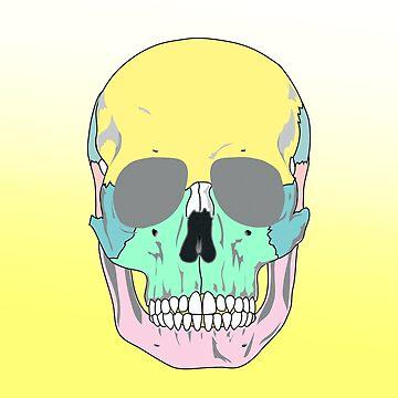 FUNKY SKULL (POP ART STYLE)  by GayRiot