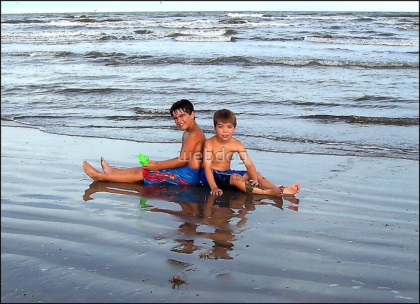 BEACH BOYS by webdog