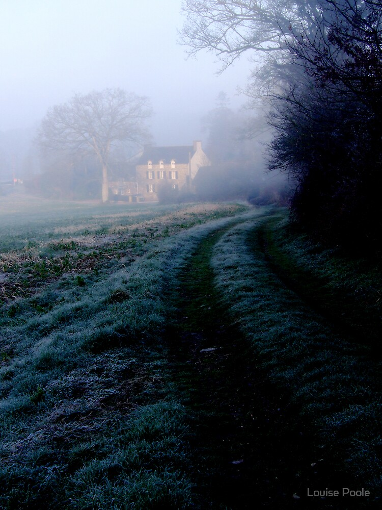 Misty morning by Louise Poole