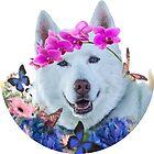 Husky Flower Child Free Spirit by AspenWillow
