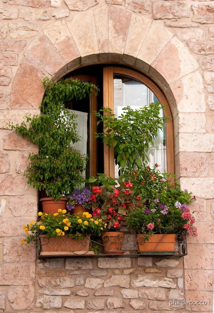 Window Garden by phil decocco