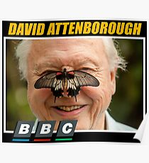 david attenborough Poster