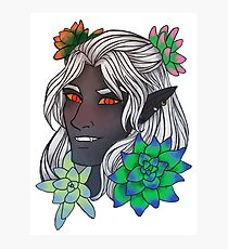 Dark Elf with Succulents Photographic Print
