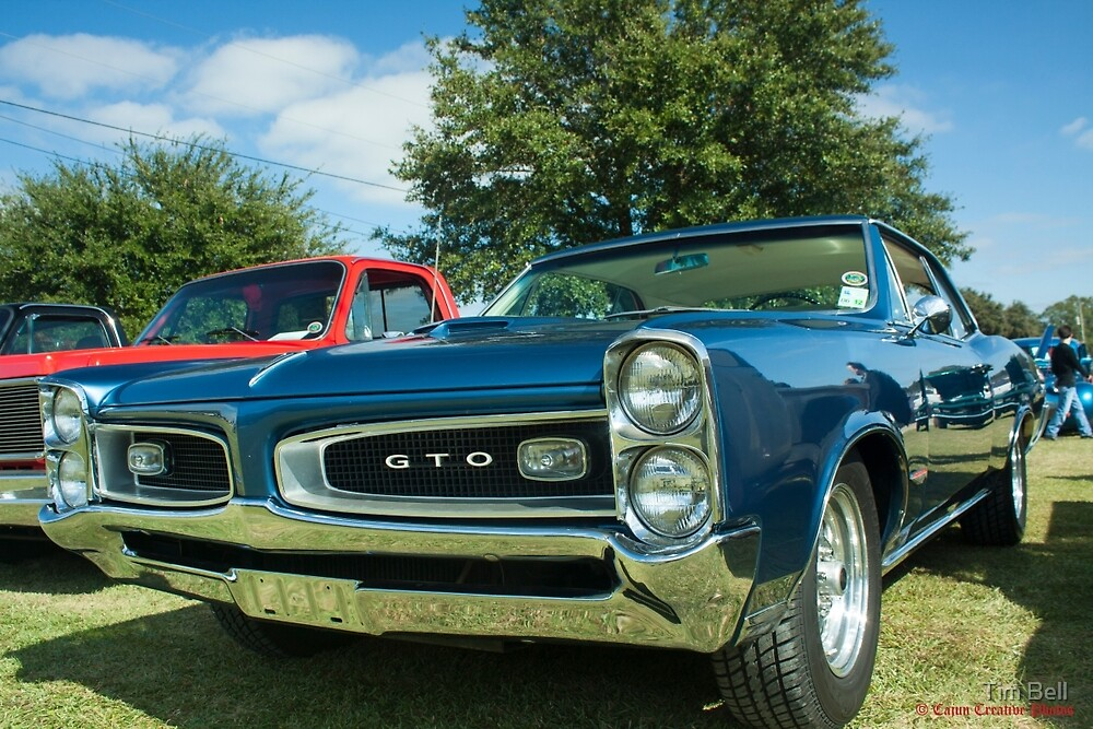 GTO by Timothy Bell