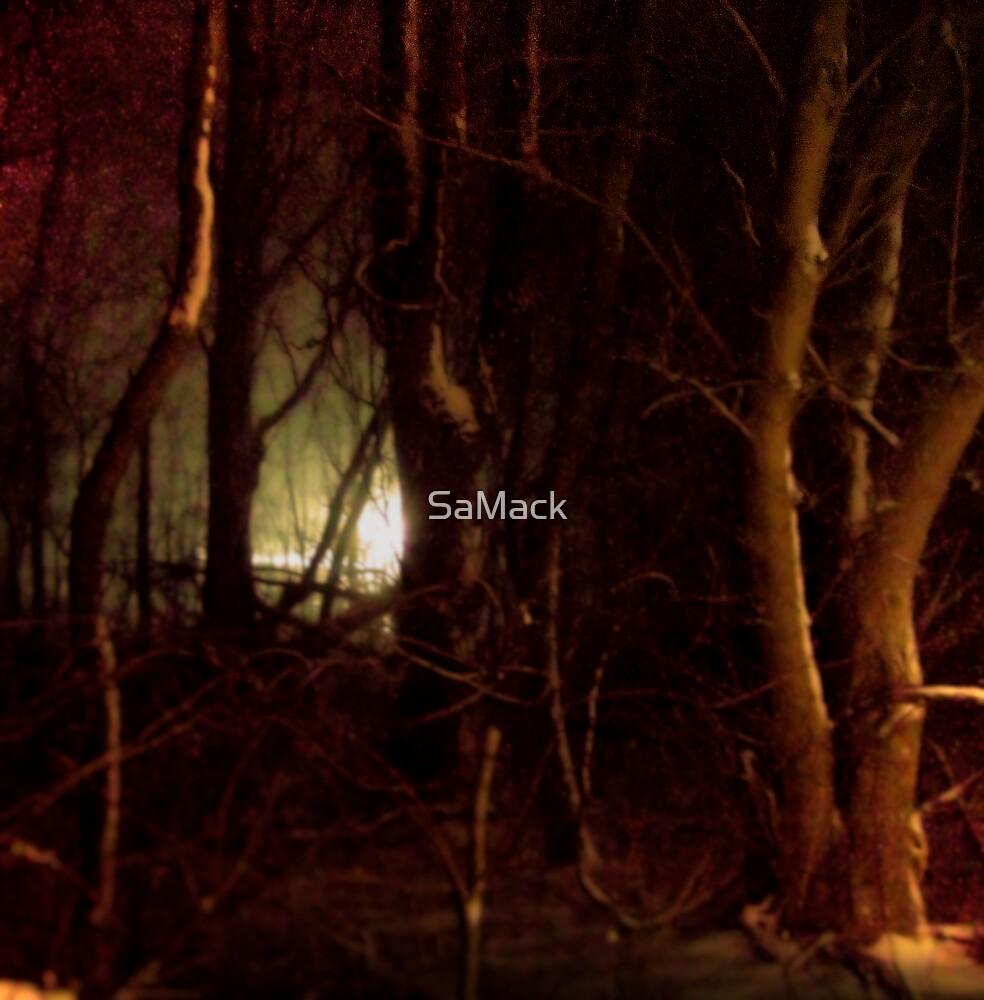 Light In the Night by SaMack