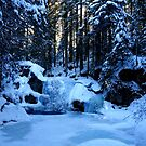 Sunset at a frozen Waterfall in a beautiful Forest by Imi Koetz